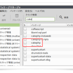 Linux Mint : 苦労して「CakePHP」を入れる (1)